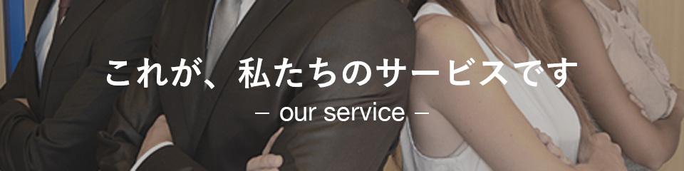 これが、私たちのサービスです